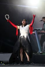 Little Dragon (foto: Merili Reinpalu)